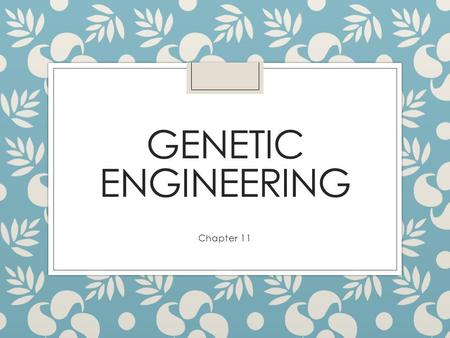 GENETIC ENGINEERING Chapter 11 Basic Steps of Genetic Engineering ◦ genetic engineering manipulating genes for practical purposes Example: ◦ recombinant.