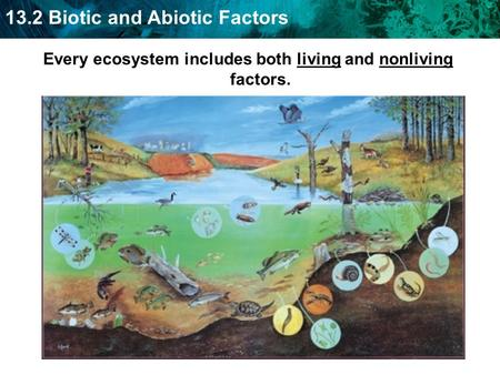 13.2 Biotic and Abiotic Factors Every ecosystem includes both living and nonliving factors.