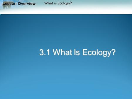 Lesson Overview Lesson Overview What is Ecology? 3.1 What Is Ecology?