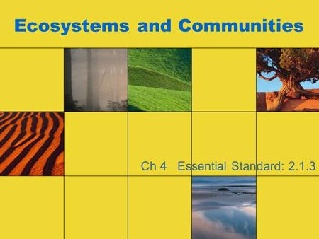 Ecosystems and Communities Ch 4 Essential Standard: 2.1.3.