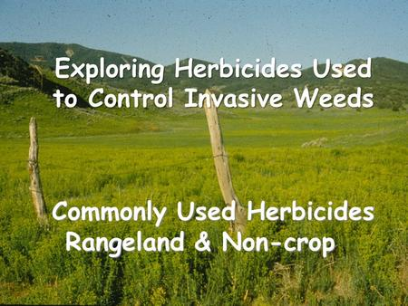 Commonly Used Herbicides Rangeland & Non-crop Exploring Herbicides Used to Control Invasive Weeds.