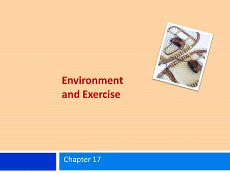 Environment and Exercise Chapter 17. Learning Objectives Know the basic physiological responses to exercise in cold and hot environments. Understand specific.