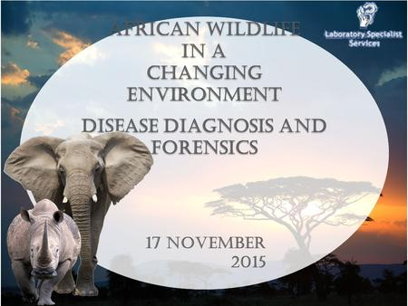 1 African Wildlife in a Changing En viro nment Disease Diagnosis and Forensics African Wildlife in a Changing Environment Disease Diagnosis and Forensics.