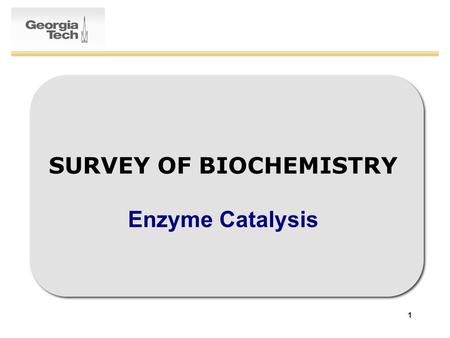 1 SURVEY OF BIOCHEMISTRY Enzyme Catalysis. 2 Enzymatic Catalysis: Recap General Properties of Enzymes –6 Enzyme Classes –Substrate Specificity –Types.