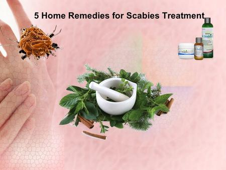 5 Home Remedies for Scabies Treatment. What is Scabies ? Scabies is a very uncomfortable, contagious skin condition commonly seen in children and young.