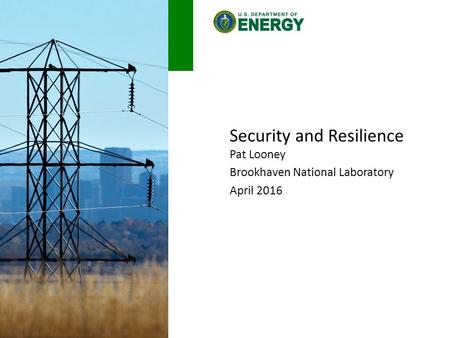 Security and Resilience Pat Looney Brookhaven National Laboratory April 2016.