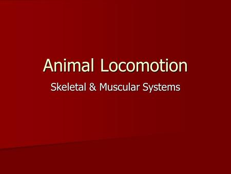 Skeletal & Muscular Systems