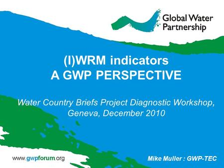 (I)WRM indicators A GWP PERSPECTIVE Water Country Briefs Project Diagnostic Workshop, Geneva, December 2010 Mike Muller : GWP-TEC.