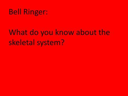 Bell Ringer: What do you know about the skeletal system?