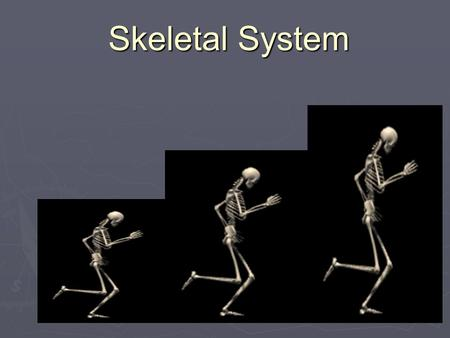 Skeletal System. What are the 5 Functions of the Skeletal System? 1. Movement: Skeletal system provides points of attachment for muscles. Your legs and.
