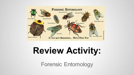 Review Activity: Forensic Entomology. ●You can do this activity by yourself or partner up with one or two others. ●Get out a sheet of notebook paper and.