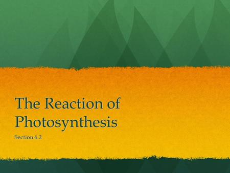 The Reaction of Photosynthesis Section 6.2. Reaction of Photosynthesis During photosynthesis (p.syn) captured solar energy is converted to chemical energy.