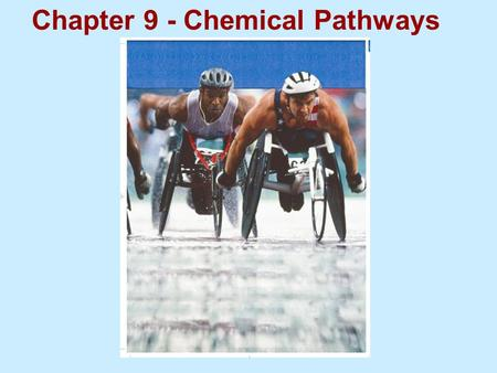 Chapter 9 - Chemical Pathways. Food serves as a source of raw materials for the cells in the body and as a source of energy. Animal Plant Animal Cells.