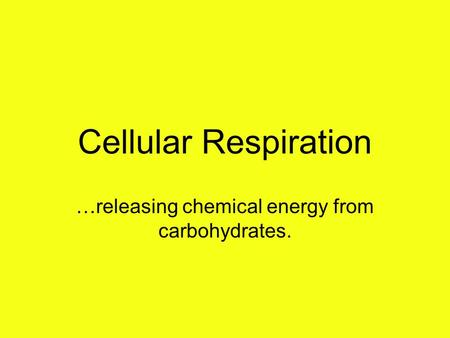 Cellular Respiration …releasing chemical energy from carbohydrates.