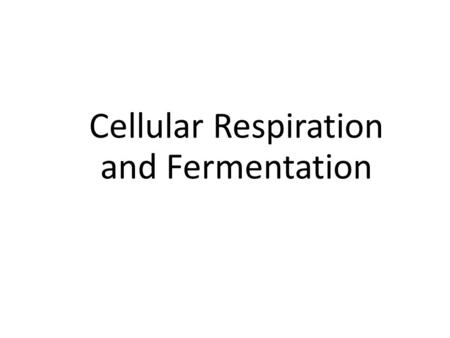 Cellular Respiration and Fermentation. Section 9.1 Cellular Respiration: An Overview Essential Question: How do organisms obtain energy? Guiding Question: