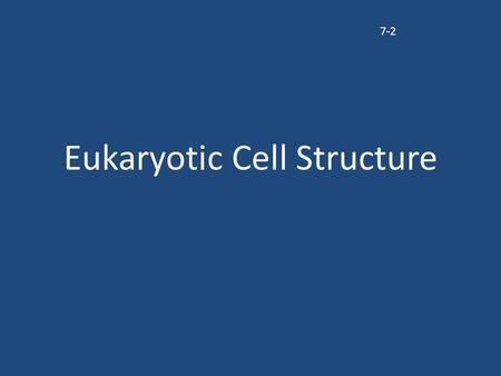 "Eukaryotic Cell Structure 7-2. Organelles All the tiny structures that are found inside a cell are called organelles Organelle = means ""little organs"""