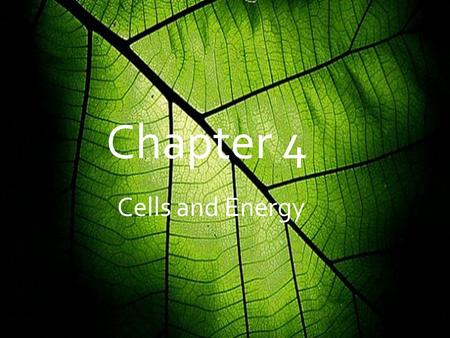 Cells and Energy Chapter 4 Cells and Energy. 4.1 Chemical Energy & ATP  When you eat, the food you intake is made of Carbs, Proteins, and Lipids. Your.