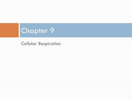 Cellular Respiration Chapter 9. Review  What is the equation for photosynthesis?  What are the two reactions for photosynthesis? Where do they occur?