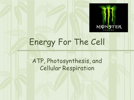Energy For The Cell ATP, Photosynthesis, and Cellular Respiration.