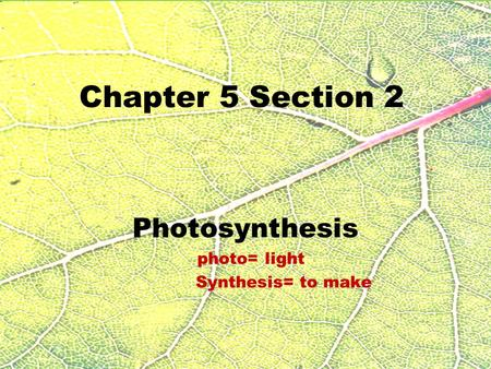 Chapter 5 Section 2 Photosynthesis photo= light Synthesis= to make.
