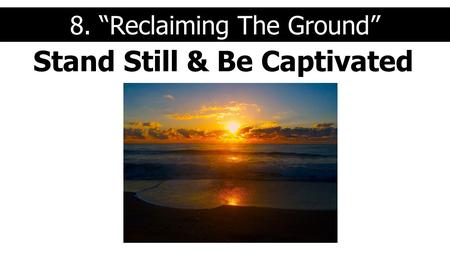 "Stand Still & Be Captivated 8. ""Reclaiming The Ground"""