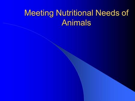 Meeting Nutritional Needs of Animals Interest Approach Have corn, soybean meal, and hay in class. Ask students to list similarities/differences between.