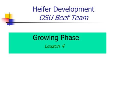 Heifer Development OSU Beef Team Growing Phase Lesson 4.