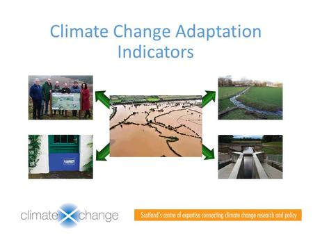 Climate Change Adaptation Indicators. Adaptation Indicators- Origin and Purpose Adaptation Indicators.