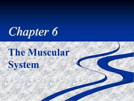 Chapter 6 The Muscular System. The Sliding Filament Theory.