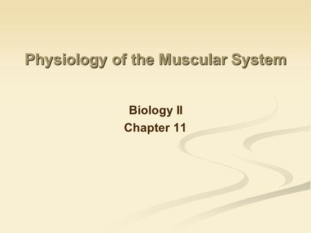 Physiology of the Muscular System Biology II Chapter 11.