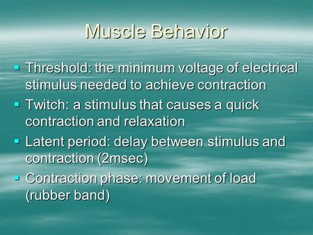 Muscle Behavior  Threshold: the minimum voltage of electrical stimulus needed to achieve contraction  Twitch: a stimulus that causes a quick contraction.