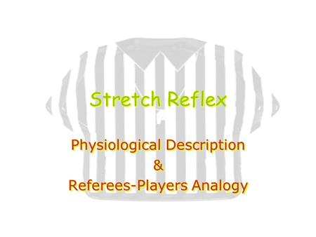 Stretch Reflex Physiological Description & Referees-Players Analogy Physiological Description & Referees-Players Analogy.