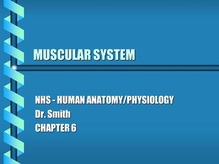 MUSCULAR SYSTEM NHS - HUMAN ANATOMY/PHYSIOLOGY Dr. Smith CHAPTER 6.