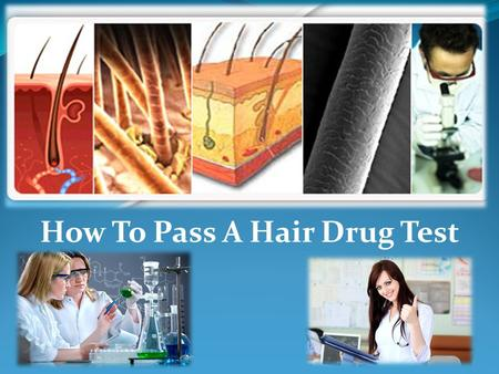 How To Pass A Hair Drug Test. What is a Hair Drug Test? As its name connotes, this kind of drug testing uses hair follicles to establish and verify persistent.