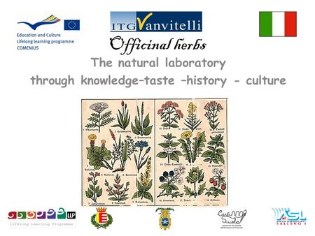 Officinal herbs The natural laboratory through knowledge–taste –history - culture.