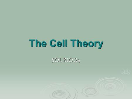 The Cell Theory SOL BIO 2a. The Cell Theory  The development and refinement of magnifying lenses and light microscopes made the observation and description.