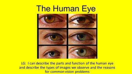 The Human Eye LG: I can describe the parts and function of the human eye and describe the types of images we observe and the reasons for common vision.