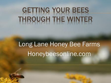 "Long Lane Honey Bee Farms Honeybeesonline.com. Welcome to Long Lane Honey Bee Farm's class, ""Getting Bees Through The Winter."" Knowledge, education, skill."