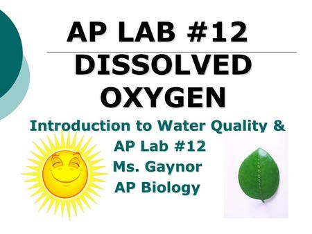 AP LAB #12 DISSOLVED OXYGEN Introduction to Water Quality & AP Lab #12 AP Lab #12 Ms. Gaynor AP Biology.