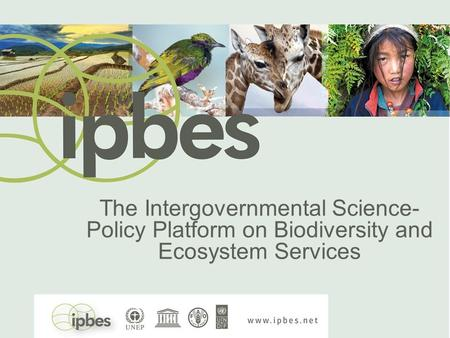 The Intergovernmental Science- Policy Platform on Biodiversity and Ecosystem Services.
