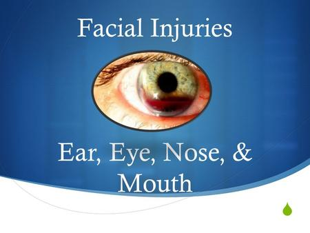  Facial Injuries Ear, Eye, Nose, & Mouth. The Ear  The ear allows us to hear and maintain balance/equilibrium.  3 sections:  Outer Ear  Middle Ear.