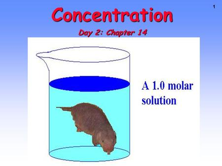1 Concentration Day 2: Chapter 14. CONCENTRATION The amount of solute present in a set amount of solvent or total solution. The amount of solute present.
