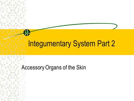 Integumentary System Part 2 Accessory Organs of the Skin.
