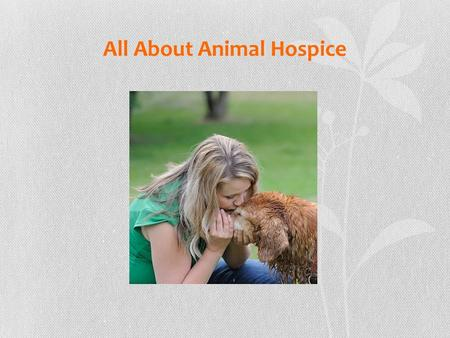 All About Animal Hospice. What led me to the field of animal hospice? My 30 second elevator speech Website: Email: Phone: Add Your Logo here.