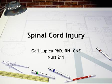 Spinal Cord Injury Gail Lupica PhD, RN, CNE Nurs 211.
