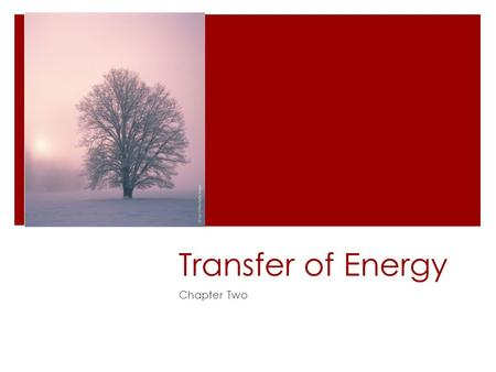 Transfer of Energy Chapter Two. Review Questions  Questions for Review  All  Questions for Thought  1, 2, 5, 6, 7, 9, 11, 13, and 15.
