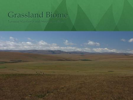 Grassland Biome Yasmin Shashova and Stephanie Frost.