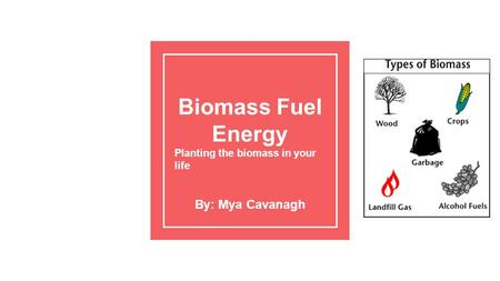 Biomass Fuel Energy Planting the biomass in your life By: Mya Cavanagh.