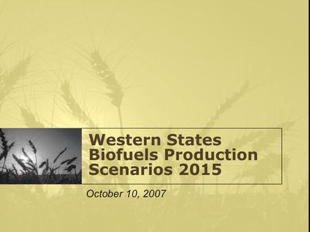 Western States Biofuels Production Scenarios 2015 October 10, 2007.