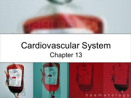 1 Cardiovascular System Chapter 13. 2 I. Structure of the Heart A. Average size: 14 cm long and 9 cm wide B. Found between the lungs, anterior to the.